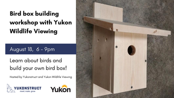 Bird box building workshop with Yukon Wildlife Viewing