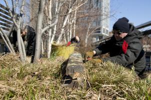 High Line Spring Cutback Training