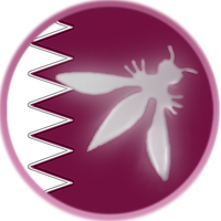 OWASP Qatar Chapter Meeting Feb 2012