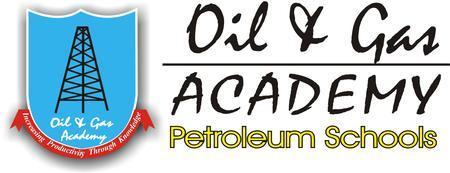 Upstream Petroleum Economics: Reserves, Risks, Fiscal...