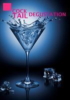 Cocktail Degustation