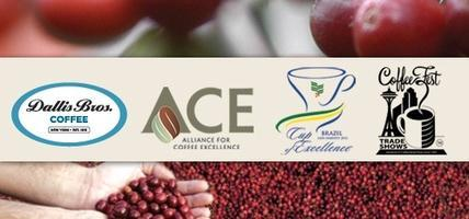 Cup of Excellence Brasil Naturals 2012 Cupping