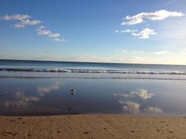 NLP By The Sea For FREE