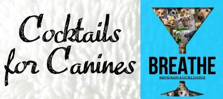 Breathe Presents: Cocktails For Canines