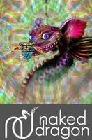 Gordon Smith - Intuitive Studies