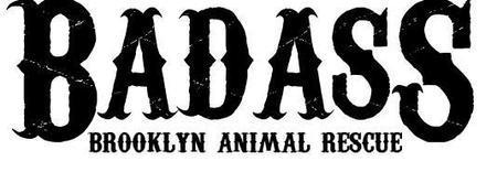 Badass Brooklyn Animal Rescue BBQ!