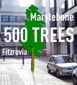 Invitation - Planting of 500th new tree in Marylebone...