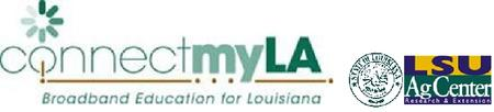 Connect My Louisiana - Southwest Summit
