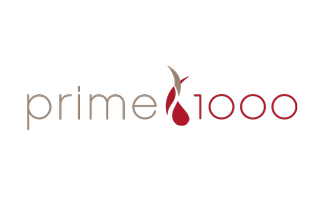 Traveling Table: Prime 1000