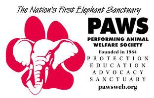 Circus PAWS - Saturday 1 PM Matinee