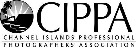 CIPPA Presents: Photography- The Business and Art of...