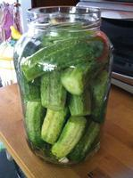 Pickling 101: Cucumbers: the basics of fresh and...