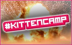 #KittenCamp Manchester September 2012