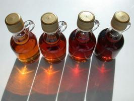 Maple Sugaring at Eden Village, March 17