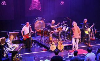 Whole Lotta Led - The Finest Led Zeppelin Tribute Band