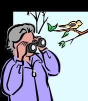 Canceled! Birds of Brooker Hike - October