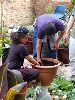Gibbon's Rent Gardening Workshop