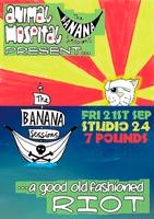 Animal Hospital & The Banana Sessions Present... A...