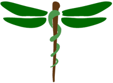 Dragonfly Natural Health logo