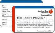 BLS Class for Healthcare Providers in Aurora, Illinois
