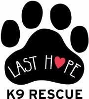 LAST HOPE K9 RESCUE ADOPTION EVENT!