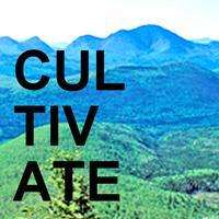 Cultivate 2013