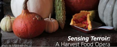 Exclusive Preview: Sensing Terroir: A Harvest Food...