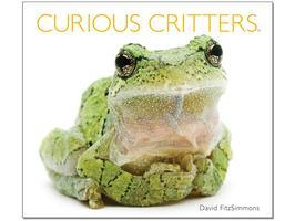 Curious Critters: How To Produce Your Own Animal Portraits...