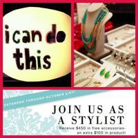 Tampa/Sarasota Stella & Dot Monthly Opportunity...
