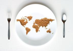 The IPID Student Speaker Conference:   The Global Food...