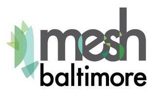 Mesh Baltimore SkillShare, #2