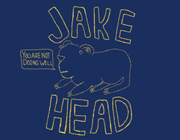 Jake Head: You Are Not Doing Well Standup Tour