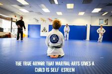 Ricardo Almeida Brazilian Jiu Jitsu Academy logo