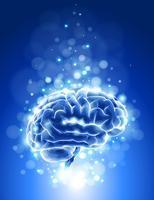 Higher Brain Living® Presentation