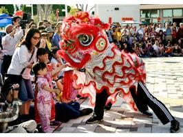 Lunar New Year Celebration at  Orange County