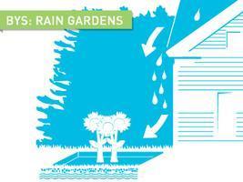 Backyard Skills: Rain Gardens