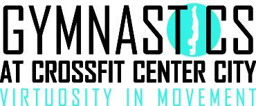 Gymnastics Seminar at Crossfit Center City