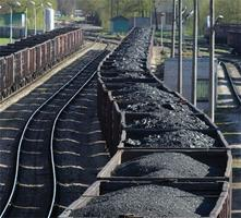 Coal Train to Oblivion: How Capitalism is Killing the...