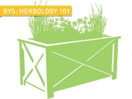 Backyard Skills: Herbology 101
