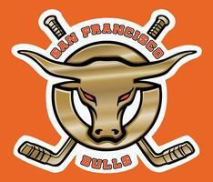 SF Bulls Hockey Game for TNT