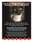 """Black & White Purrball"" Valentine's Day Adoption Event"