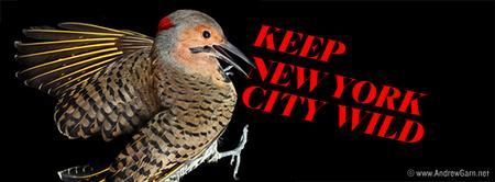 Keep New York City Wild: The WBF's 2nd Annual...