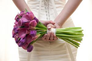 Feb 24th Orland Park Wedding Expo