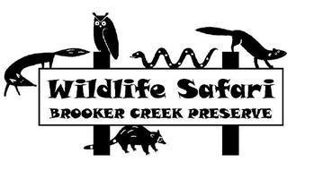 Wildlife Safari!