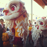 Lion Dance Party