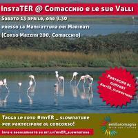 InstaTER @ Comacchio e le sue Valli (Delta del Po)