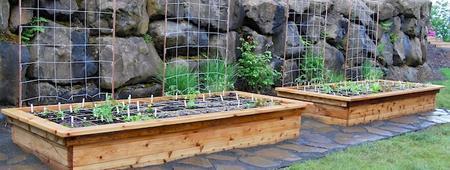 Backyard Carpentry: Build your own raised garden...
