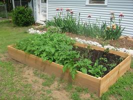 Build Your Own Raised Bed Garden