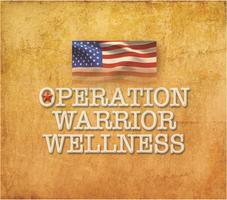 Healing the Hidden Wounds of War