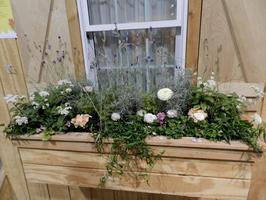 Kitchen Window Herb Garden Building